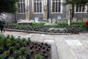 croydon-garden-inset